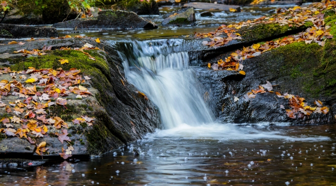 Time for fall colors:  Mini waterfall with fall leaves scattered about