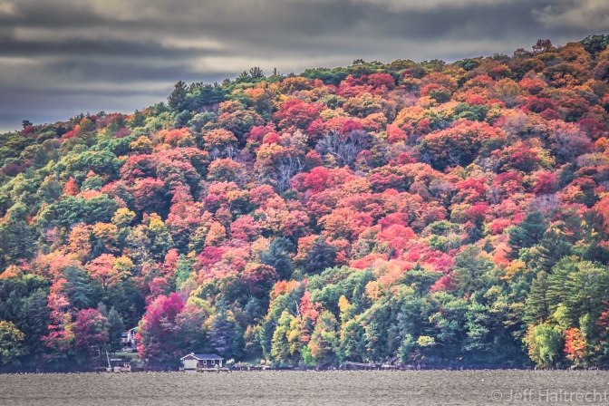 Spectacular Colors On Bigwin Island at Dorset, Lake Of Bays