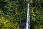 442 foot tall and powerful akaka falls big island hawaii