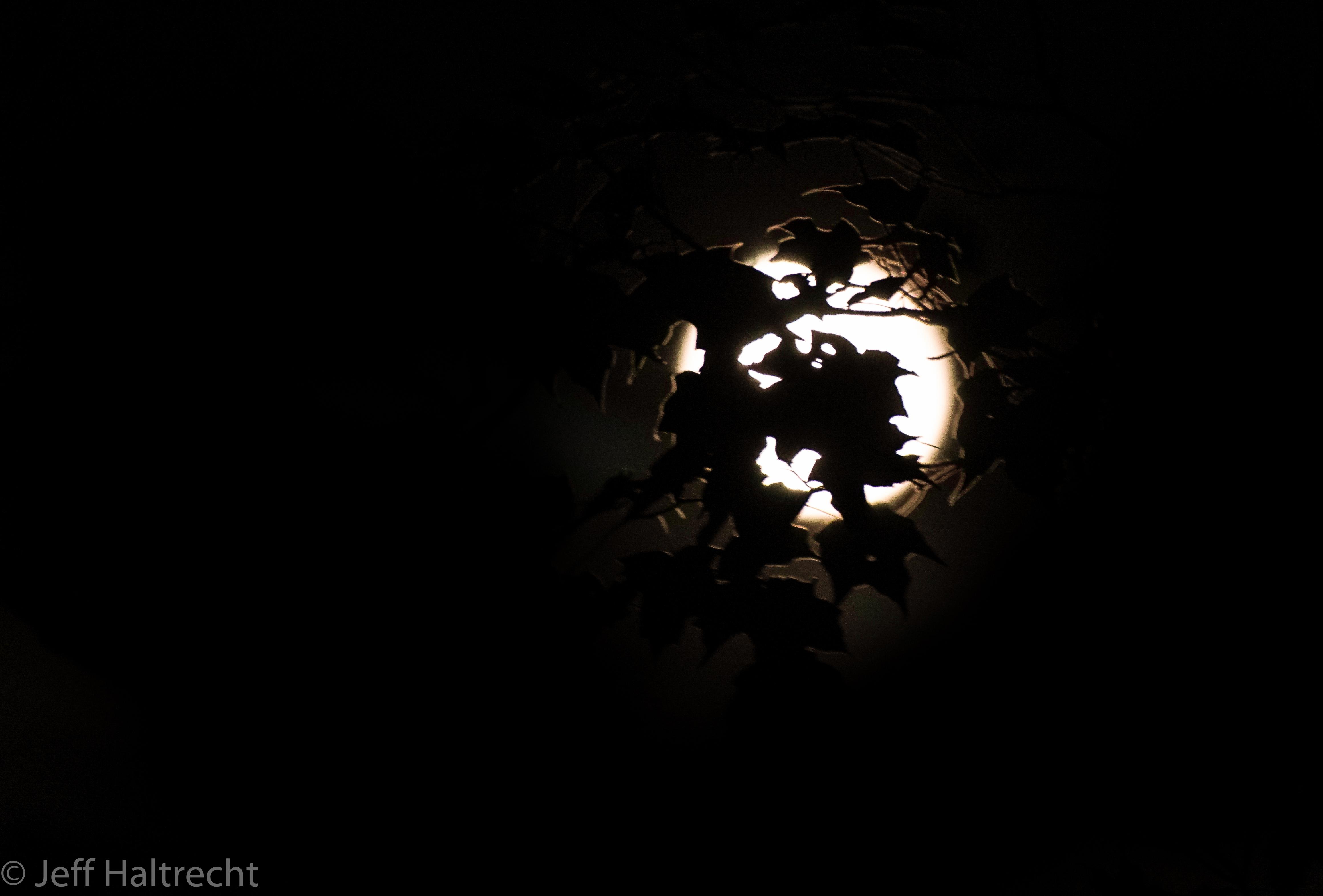haunted halloween harvest moon